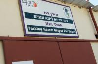 signs of Mehadrin Group on packing house for grapes |Beka'ot Settlement | May 2010 | Photographed by CorpWatch