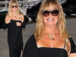 Goldie Hawn wore black for her flight out of LAX.  The iconic actress smiled for photos, aging gracefully, on Saturday, July 18, 2015 X17online.com