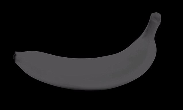 Black and white video can fool your brain into viewing COLOUR
