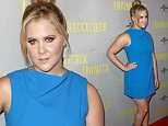 Amy Schumer at the Trainwreck premiere in Melbourne, Australia July 21, 2015. Media-Mode/Simon Woodcock\n21 July 2015\n©MEDIA-MODE.COM