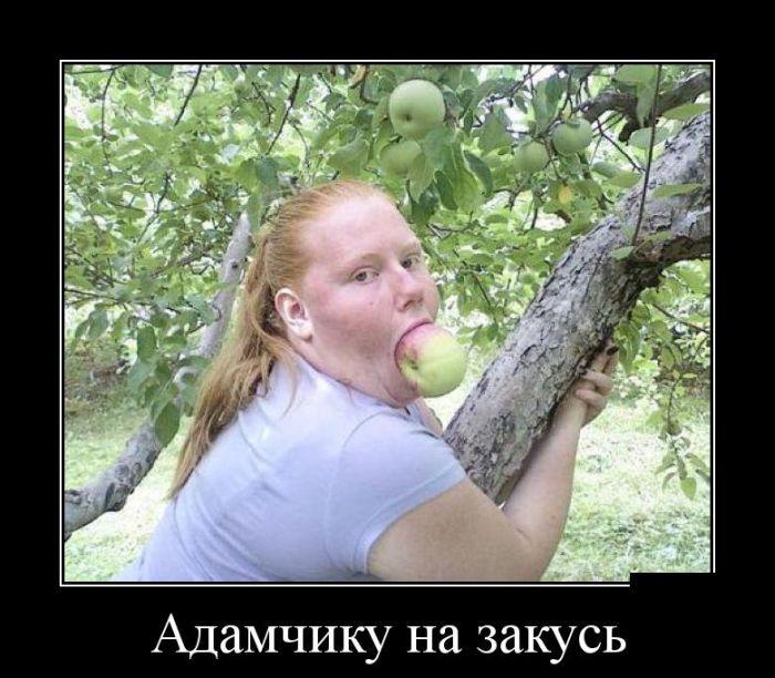 demotivatory 22 - Демотиваторы дня;))