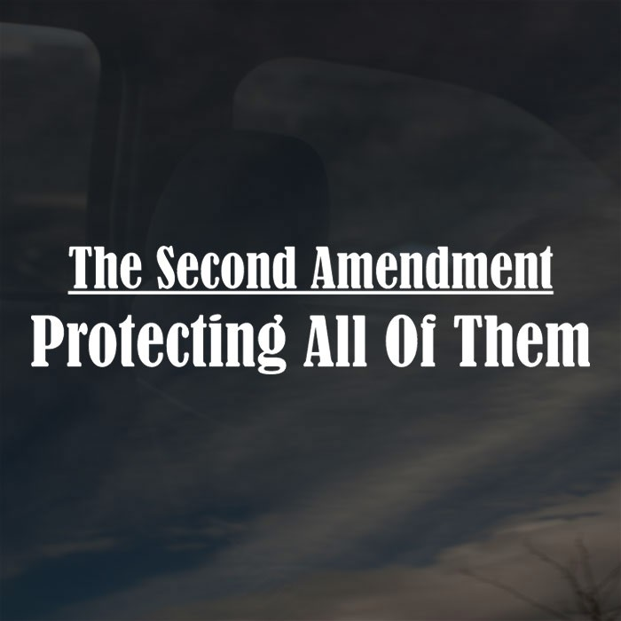 Second-Amendment01[1]