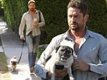 Gerard Butler was spotted in West Hollywood, while out for a stroll with his doggie.  The actor had his hands full, between the leash, his bag and his phone, on Thursday, July 23, 2015 X17online.com