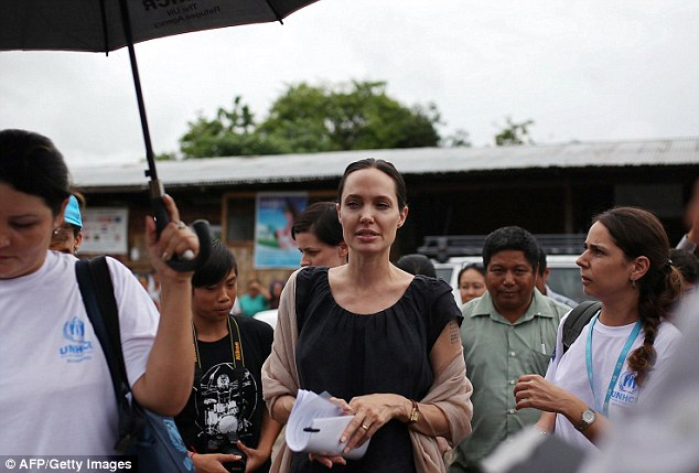 Individual: It is hoped that Mrs Jolie Pitt's unique status as a non-Government party will help 'shine a light' on the country's problems in a way other organisation's can't