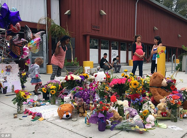 Sea of flowers: Neighbors look at the growing memorial of flowers, stuffed animals and notes left in memory of Madyson Middleton in Santa Cruz Wednesday