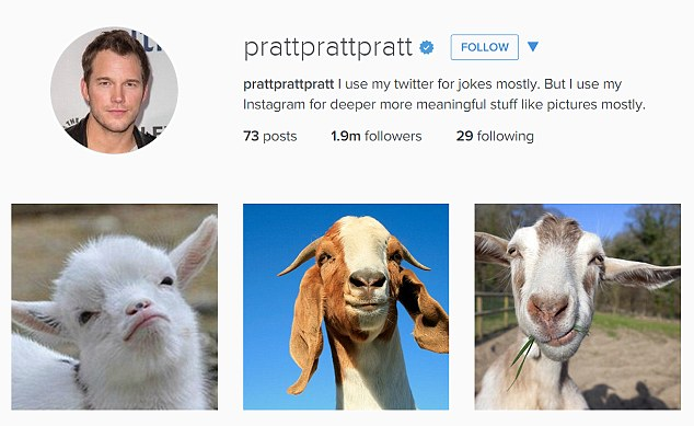 'I ain't afraid of no goats' The 36-year-old actor shared three snaps of goats and captioned them with the theme-tune to the original 1984 Ghostbusters movie