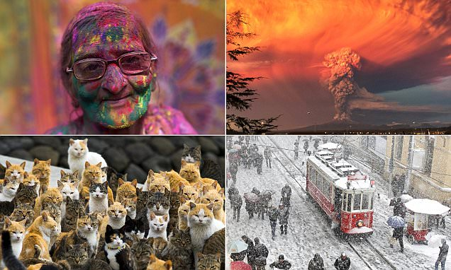 The 20 photos that have been chosen as best of 2015 so far by Instagram users