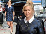 Picture Shows: Amy Schumer  August 03, 2015\n \n 'Trainwreck' star Amy Schumer visits 'The Daily Show' in New York City, New York. Amy is one of the three final guests for host Jon Stewart. \n \n Non-Exclusive\n UK RIGHTS ONLY\n \n Pictures by : FameFlynet UK � 2015\n Tel : +44 (0)20 3551 5049\n Email : info@fameflynet.uk.com