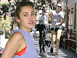 Picture Shows: Miley Cyrus  August 03, 2015\n \n Singer/actress Miley Cyrus and a friend spotted out and about with their dogs in Calabasas, California.\n \n Exclusive All Rounder\n UK RIGHTS ONLY\n FameFlynet UK � 2015\n Tel : +44 (0)20 3551 5049\n Email : info@fameflynet.uk.com