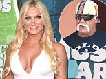 brooke hulk hogan
