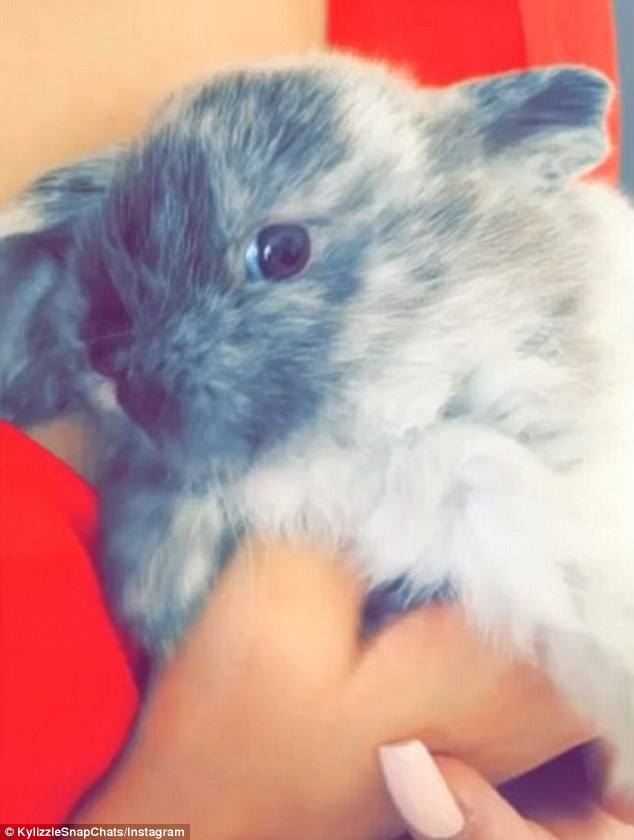 'The new addition': Kylie Jenner's pal Pia Mia took to Snapchat to share a look at her friend's new rabbit, which Kylie named Bruce