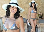 EXCLUSIVE FAO DAILY MAIL ONLINE GBP 40 PER PICTURE\n Mandatory Credit: Photo by Startraks Photo/REX Shutterstock (4937692c)\n Brooke Burke-Charvet\n Brooke Burke-Charvet in Malibu, America - 09 Aug 2015\n Brooke Burke-Charvet Rocking A Silver Bikini\n
