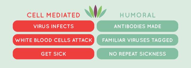 110_vaccination_vs