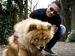 (L-R) Memphis Depay of PSV Eindhoven during a photo shoot on March 22, 2014 at Eindhoven, The Netherlands.(Photo by VI Images via Getty Images)