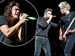 CHICAGO, IL - AUGUST 23:  Liam Payne and Niall Horan of One Direction perform at Soldier Field on August 23, 2015 in Chicago, Illinois.  (Photo by Timothy Hiatt/Getty Images)