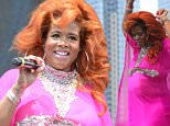 BROOKLYN, NY - AUGUST 22: Kelis performs onstage at Afropunk Fest at Commodore Barry Park on August 22, 2015 in Brooklyn, New York. (Photo by Cynthia Edorh/Getty Images)