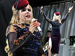 V Festival held at Hylands Park - Day 2 - Performances\nFeaturing: Paloma Faith\nWhere: Chelmsford, United Kingdom\nWhen: 23 Aug 2015\nCredit: WENN.com