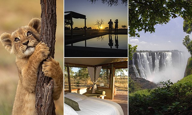 Victoria Falls in Zimbabwe is a safari made in heaven