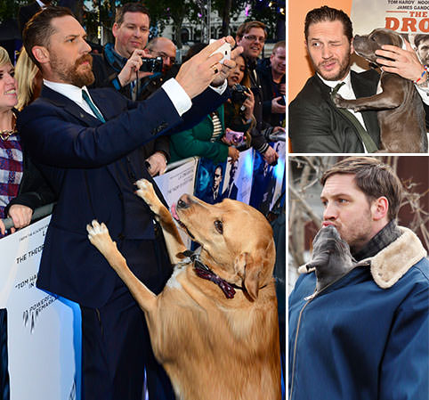 Tom Hardy and his doggy friends
