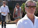 Pierce Brosnan was sporting some battle damage hile out shopping with the wife in Malibu.  The action star was also weraing orange tinted shooting glasses, with a white button-uo and jeans, on Thursday, September 3, 2015 X17online.com