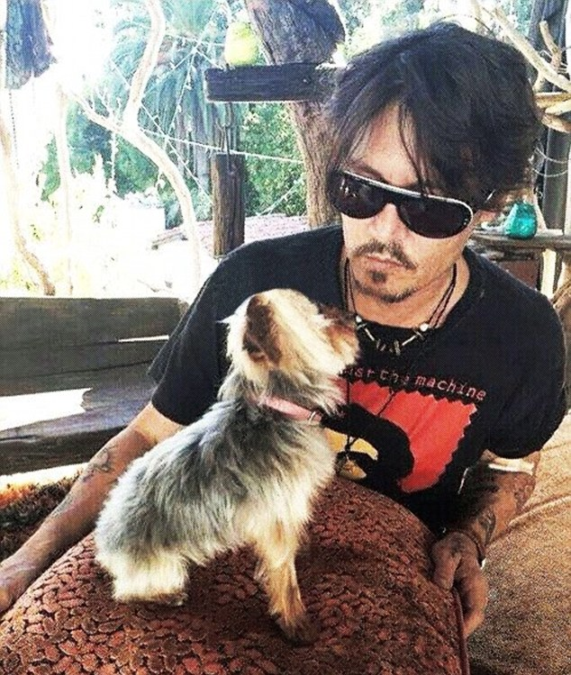 The actor sparked an international incident when it emerged that his beloved dogs Boo and Pistol had been illegally smuggled into Australia on his private jet