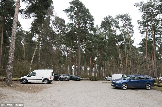 The car Park at the woods in Surrey, a well known 'dogging area'. At night, the car park is filled with cars flashing their lights as dozens congregate, apparently unimpeded by police