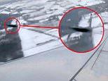 PREVIEW Plane UFO 2.jpg