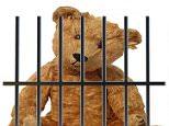 teddy bear bars.jpg
