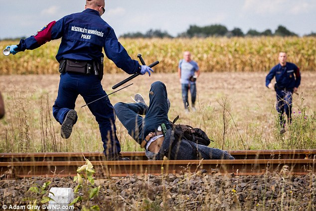 A migrant falls face-first between railway tracks after trying to break through a police cordon  on the Hungarian border