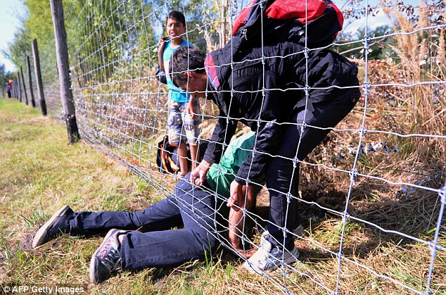 A migrant helps another  pass under a fence after they broke through a police cordon near Roszk, Hungary