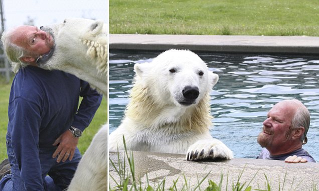 Mark Dumas shares his swimming pool and his BED with a polar bear