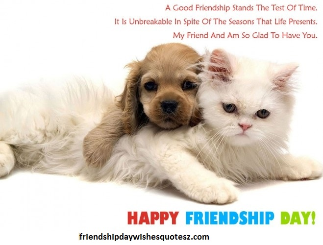 sweet friendship day 2015 greetings cards collection