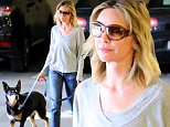 EXCLUSIVE TO INF. \nSeptember 10, 2015: Calista Flockhart, casual in denim and a grey blouse, was seen taking one of her dogs to the vet's office on a blazing hot day in Los Angeles. CA.\nMandatory Credit: Sasha Lazic/INFphoto.com Ref.: infusla-257