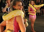 Hollywood, CA - Bindi Irwin was in her element as she posed with a snake ahead of the season 21 premiere of 'Dancing With The Stars'. The 17-year-old daughter of Steve Irwin was fearless and handled the snake like a pro. Bindi was joined by dancing pros Mark Ballas, Val Chmerkovskiy and Louis van Amstel.\nAKM-GSI         September 10, 2015\nTo License These Photos, Please Contact :\nSteve Ginsburg\n(310) 505-8447\n(323) 423-9397\nsteve@akmgsi.com\nsales@akmgsi.com\nor\nMaria Buda\n(917) 242-1505\nmbuda@akmgsi.com\nginsburgspalyinc@gmail.com