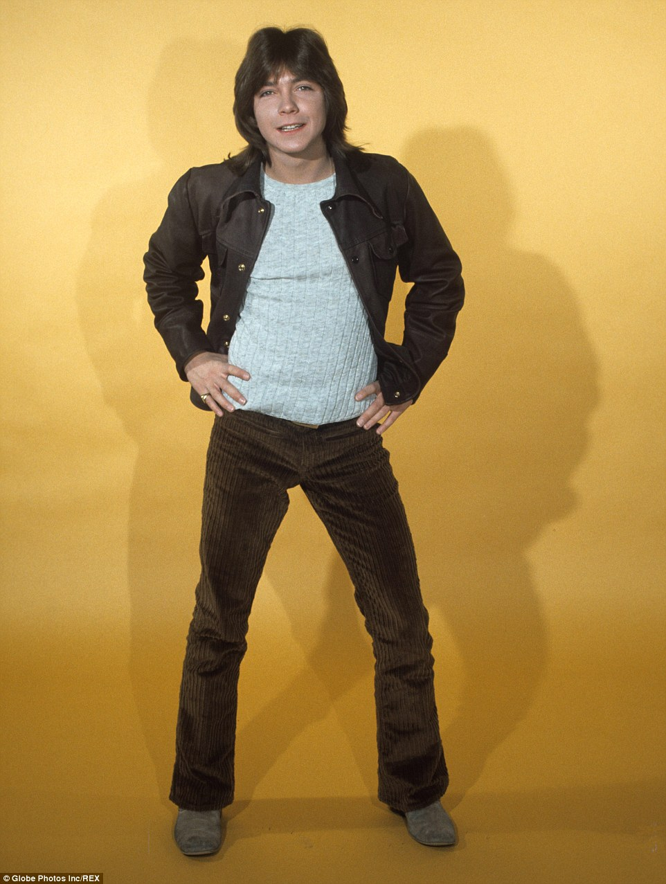 Star: Cassidy rose to fame after he was cast in The Partridge Family and went on to have a phenomenally successful pop career in the 70s