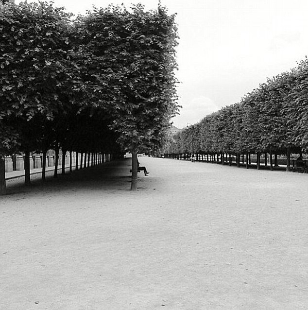 Postcards from Paris? The girlfriend of Sam Worthington posted another black and white photo on Instagram  believed to beJardin des Plantes in Paris last Thursday