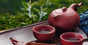茶膏品牌设计及传播推广