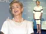 Sharon Stone attends the Pilosio Building Peace Award 2015 in Italy  Pictured: Sharon Stone Ref: SPL1123093  110915   Picture by: Fotogramma / Splash News  Splash News and Pictures Los Angeles: 310-821-2666 New York: 212-619-2666 London: 870-934-2666 photodesk@splashnews.com