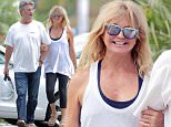 Picture Shows: Kurt Russell, Goldie Hawn  September 10, 2015\n \n Couple Kurt Russell and Goldie Hawn enjoy lunch in Pacific Palisades. The pair have been busy working on their home they have shared together for years. \n \n Non-Exclusive\n UK RIGHTS ONLY\n \n Pictures by : FameFlynet UK © 2015\n Tel : +44 (0)20 3551 5049\n Email : info@fameflynet.uk.com