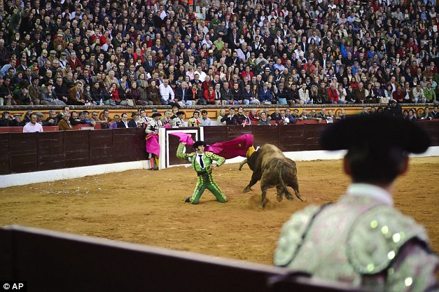 Daring: Despite not having two-eyed stereoscopic vision to judge distances and the speed of approaching objects accurately, he showed little trouble killing his first bull in front of a crowd of 5,400