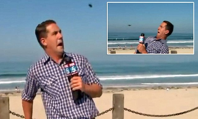 Fox 5's Brad Willis FREAKS OUT as insect flies at him during TV broadcast