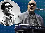 SAN FRANCISCO, CA - SEPTEMBER 16:  Stevie Wonder performs at the Salesforce keynote at Dremforce 2015 at Moscone Center on September 16, 2015 in San Francisco, California.  (Photo by Tim Mosenfelder/Getty Images)