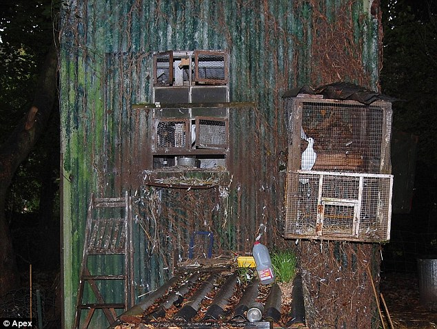 Unusual: Cages used to trap wild birds were found in Christopher Searle's garden, pictured