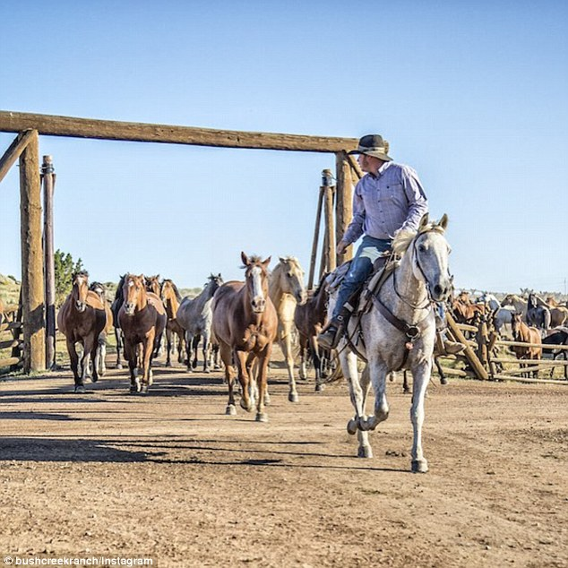 With mountain views and private cabins, guests enjoy horseback rides, yoga sessions, and fly-fishing trips