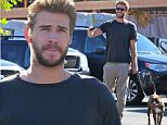 EXCLUSIVE: Liam Hemsworth see shopping in Malibu whit friends.\n\nPictured: Liam Hemsworth \nRef: SPL1130100  180915   EXCLUSIVE\nPicture by: Jacson / Splash News\n\nSplash News and Pictures\nLos Angeles: 310-821-2666\nNew York: 212-619-2666\nLondon: 870-934-2666\nphotodesk@splashnews.com\n