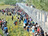 epa04931357 Migrants walk next to the razor wire fence at the Serbia-Hungary border, 15 September 2015. Hungary has sealed the last gap in the barricade along its border with Serbia, closing the passage to thousands of refugees and migrants still waiting on the other side.  EPA/DARKO DOZET