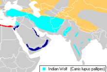Canis lupus pallipes distribution.png