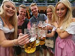 MUNICH, GERMANY - SEPTEMBER 19:  Revelers raise their beer glasses at the Schottenhamel beer tent on the opening day of the 2015 Oktoberfest on September 19, 2015 in Munich, Germany. The 182nd Oktoberfest will be open to the public from September 19 through October 4 and will draw millions of visitors from across the globe in the world's largest beer fest.  (Photo by Alexander Hassenstein/Getty Images)