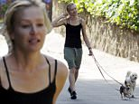 EXCLUSIVE. Coleman-Rayner. Los Angeles, CA, USA. September 22, 2015\nPortia de Rossi shows off her natural beauty and sculpted calf muscles as she walks her two dogs in LA early Tuesday morning. The Australian actress - married to Ellen DeGeneres - is regularly seen exercising the coupleís rescue dogs, Wolf (white) and Augie (white and brown.)\nCREDIT LINE MUST READ: Anthony Taafe/Coleman-Rayner\nTel US (001) 310-4744343- office \nTel US (001) 323 5457584 - cell\nwww.coleman-rayner.com