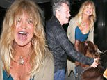 UK CLIENTS MUST CREDIT: AKM-GSI ONLY\nEXCLUSIVE: Beverly Hills, CA - Goldie Hawn and Kurt Russell seen leaving The Palm restaurant in Beverly Hills playing with a big dog.\n\nPictured: Goldie Hawn and Kurt Russell\nRef: SPL1134935  220915   EXCLUSIVE\nPicture by: AKM-GSI / Splash News\n\n